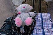 Около 50 детей из Луганской области отправлены в Россию