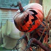 Западный мир в ночь с 31 октября на 1 ноября будет отмечать Хэллоуин
